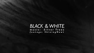 #3 | Black & White | Music by Silver Trees | Footage by ShiningNewt