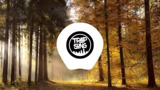 Tarro & PLVTINUM & Champagne & Sunshine (Ellusive Remix) | chill nation | trap song |
