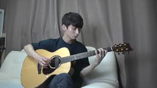 (Avicii) Wake Me Up - Sungha Jung