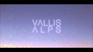 Vallis Alps - Thru (CSC Bootleg Remix)