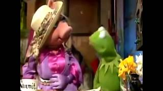 Ain't saying she's a gold digger Muppets