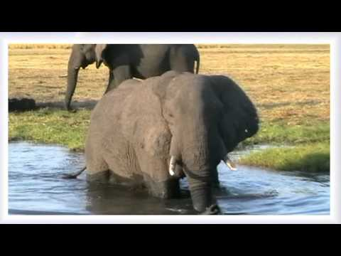 Ukuthula (peace) South Africa with video of an beautifull country