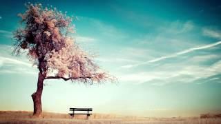 Finnebassen - Footsteps [Adriatique Remix] - Supernature