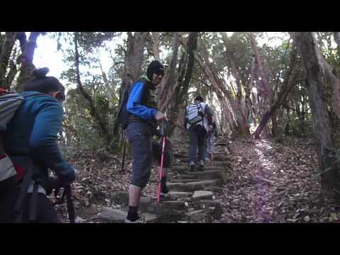 Poon Hill Trek Day 4_Ghorepani to Tadapani_Splash@Nepal 2011 by Brice Li