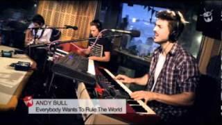 AndyBull - Everybody Wants ToRule TheWorld