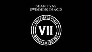 Sean Tyas - Swimming In Acid [VII]