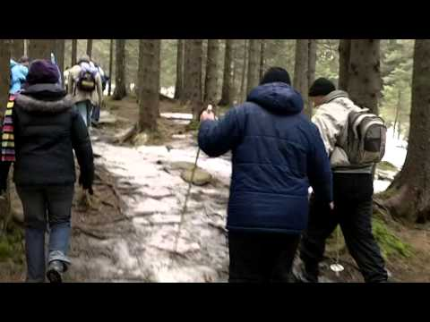 Walking the trails to Hoverla part 2