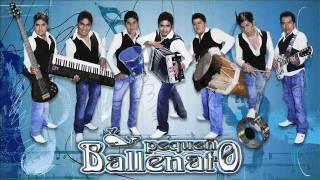 PEQUEÑO BALLENATO -LOLITA LA CUMBIAMBERA 2012.wmv