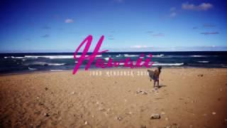 Mica Surfboards Team: João Mendonça in Hawaii