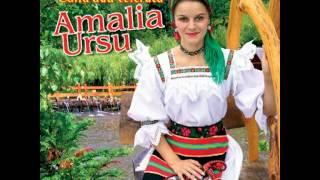 Amalia Ursu - Omule de pe pamant