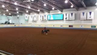 Aqha boxing Jessee Clark and Mr Chic Master
