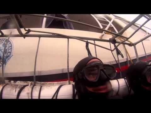 GoPro Shark Cage Dive