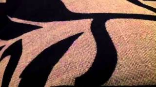 Canção do engate António variações-Cover