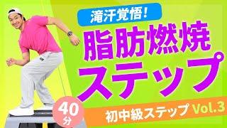初中級ステップVol.3/西ジェフィー/ホームフィットネス24