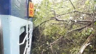 Dangerous - Train passing through a Uprooted Tree - Indian Railways