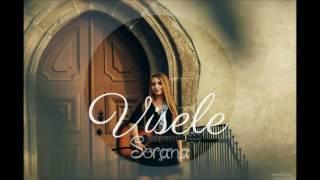 Irina Rimes-Visele ( Acoustic cover by Sorana )