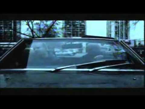 hladno-pivo-samo-za-taj-osjecaj-lyrics-download-official-video-allin1box