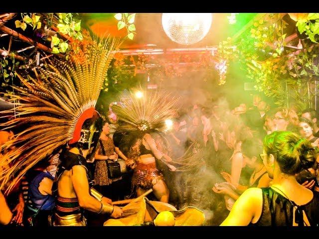 Video de Guacamayo Tropical en directo