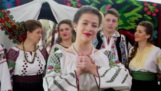 Ifrim Alexandra-Taicuta vorbele tale