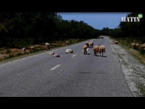 Video : Reportage : Comment vit-on le confinement sanitaire dans le monde rural ?