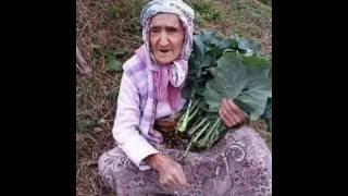 Birak sevduğum Birak. Karadeniz müzikleri