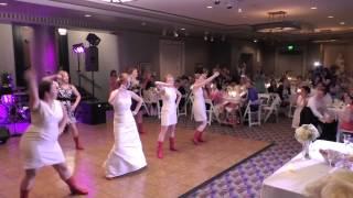 Suzanne's Wedding Flashmob - Timber