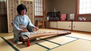 Sakura Sakura play on koto or Japanese harp by Keko Kanagawa in Kyoto, Japan.