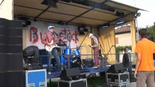 Plankton - Marky the monk is a monkey LIVE@Bugustock