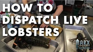 How to Dispatch Live Lobsters Video