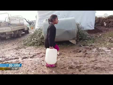Video: Siria, profughi al confine. Onu: dramma umanitario. TG2000 del 28 gennaio 2021