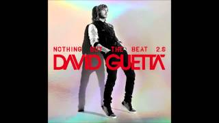 David Guetta & Nicky Romero feat. Sia - Wild One Two