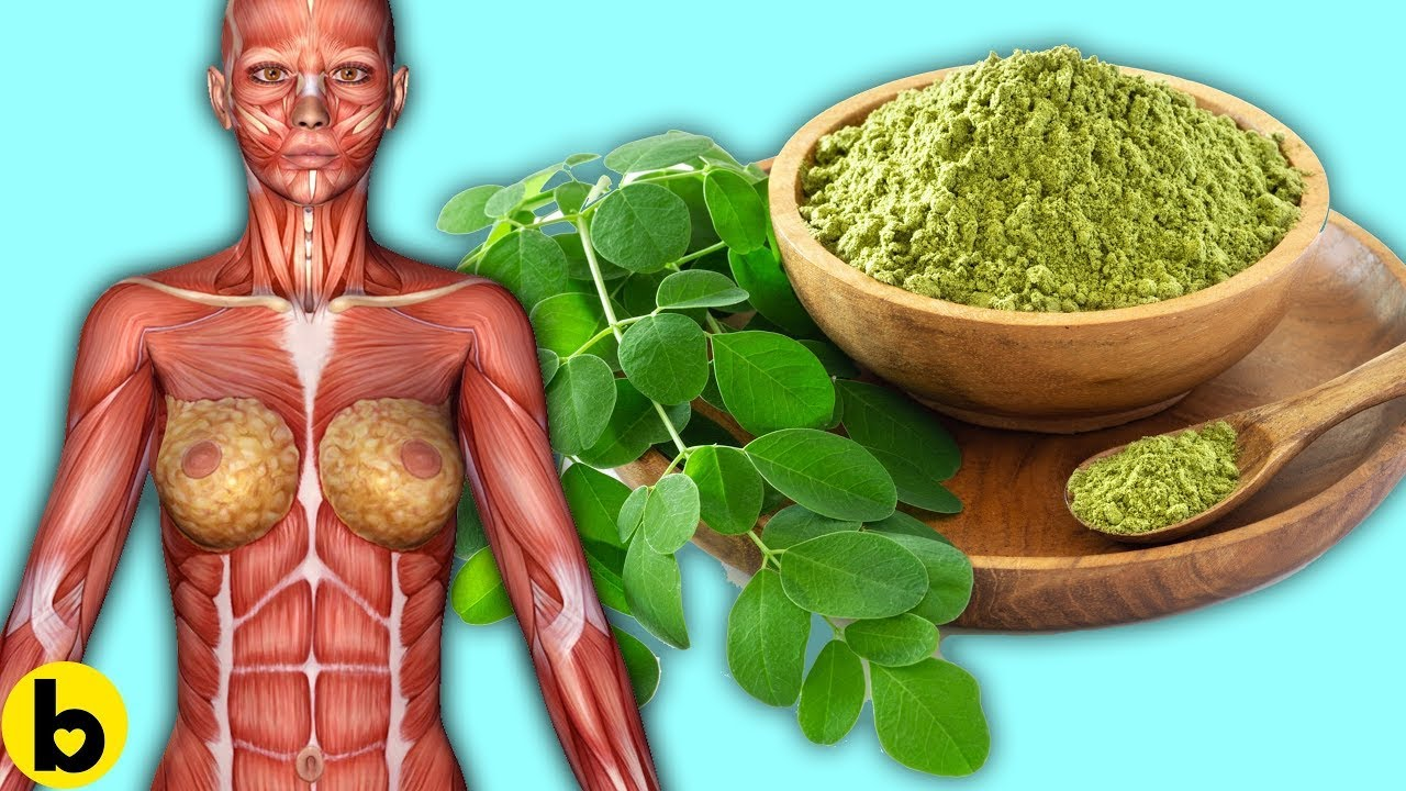 10 Health Benefits of Moringa Powder