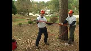 Mechanical Advantage Part 1