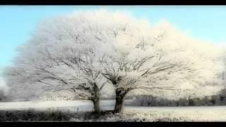 Daniel Balavoine - Le blues est blanc