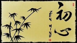 THE ZEN MIND Shunryu Suzuki Quotes .The beginner's mind.