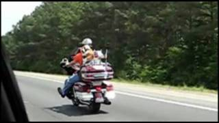 Motorcycle Dog - Bad to the Bone.