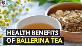 Amazing Health Benefits Of Ballerina Tea - Health Sutra