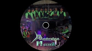 EL CAMALEON ACORDES MUSICAL IXCAN
