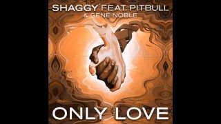 Shaggy feat  Pitbull - only love (Luca Schreiner - Island House mix)