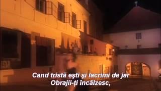 ♥ În felul meu ♥ versuri Ovidiu Adrian ♥