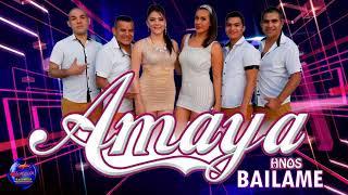 BAILAME - AMAYA HNOS ( PRIMICIA 2017 )