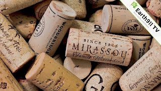 4 DIY Ways to Reuse Wine Corks