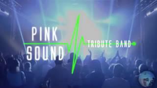 Pink Sound - Italian Pink Floyd Tribute