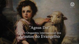 Agnus Dei - Clave de Sol - Arautos do Evangelho