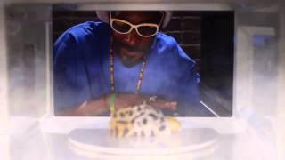 Snoop Dogg ft Destorm & Andy Milonakis - Drop It Like Its Hot (Remix)