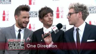 One Direction Red Carpet Interview - AMAs 2015