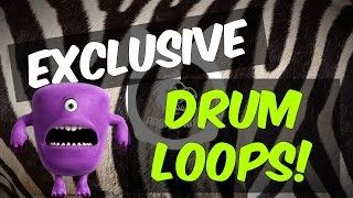 330+ Exclusive EDM / Future Drum Loops | + FREE DEMO