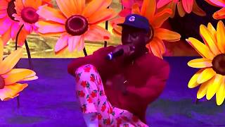 Tyler, The Creator - Boredom (Live at Panorama Festival NYC 2017)