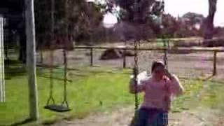 hit by swing