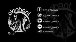 Elephant - Celebra esta Tirania (LIVE - CAFE CON RIMAS)